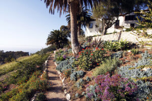 Now is a Great Time to Focus on Summer Landscaping: Learn the Dos and Don'ts to Get You Started