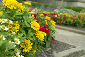 Three Areas of Your Home to Focus on When You Want to Increase Curb Appeal