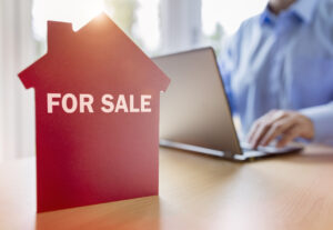 Do Not Browse for Homes Online Until You Read These Vital Tips